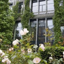 Insinger de Beaufort – Open Tuinendag